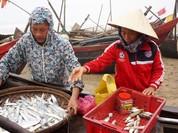 Làm rõ trách nhiệm việc chậm ứng 50 tỷ cho dân Sầm Sơn