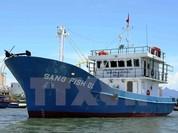 Ông Nguyễn Ngọc Sự: Tàu cá vỏ thép liên tiếp bị hỏng là do lỗi của ngư dân?