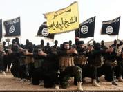 Chỉ huy cấp cao của IS vừa tới Syria đã bị không quân Mỹ tiêu diệt