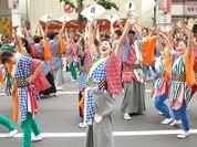 Đà Nẵng sắp có lễ hội Hanami đầu tiên tại Asia Park