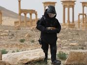 Nga đã gỡ hơn 3.000 quả bom tại thành cổ Palmyra vừa chiếm từ tay IS