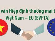 Xây dựng cổng thông tin dành riêng cho TPP và EVFTA