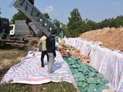 Quảng Bình đã tiêu hủy 606 tấn hải sản nhiễm cadimi