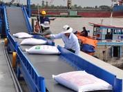 Bãi bỏ quy định khống chế số đầu mối xuất khẩu gạo
