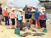 Biển miền Trung đã an toàn sau sự cố Formosa