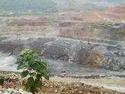 Sau một năm thanh tra, Bộ TNMT kết luận khai thác mỏ Núi Pháo có sai phạm