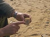 Báo Nga: Chuyên gia khảo cổ Siberia có khám phá chấn động tại Việt Nam