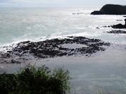 Phát hiện dấu tích miệng núi lửa cổ ở vùng biển Quảng Ngãi