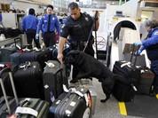 Khi cơ quan an ninh vận tải Mỹ bị 'tuýt còi'