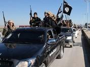 Nọc độc IS bắt đầu ngấm sâu những thành trì phủ bóng cờ đen