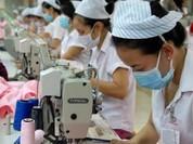 Vụ doanh nghiệp Việt mất đơn hàng 2 tỷ USD: Bộ Công Thương đề nghị sửa Quyết định 80
