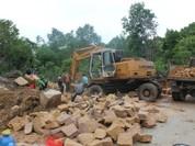 """Giá đất Phú Quốc tăng bất thường: Khi dân Phú Quốc chiếm rừng bán """"đất chỉ"""""""