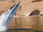 Điên rồ trò chơi xuồng cá heo và xe nước bay
