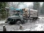 Tài năng kinh khủng của xế đường rừng
