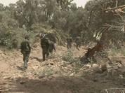 """IS """"nướng""""hàng trăm tay súng trong trận chiến Deir Ez Zor"""