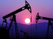 Oilprice: Nga thực hiện một bước tuyệt vời trong bối cảnh cuộc khủng hoảng dầu