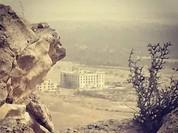 Lực lượng Tigers và đồng minh tấn công Khu vườn Palmyra