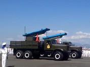 Việt Nam dùng tên lửa Israel chống địch đổ bộ chiếm đảo