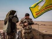 Lực lượng Dân chủ Syria SDF giải phóng 3 làng đông bắc Aleppo