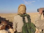 IS tấn công đánh chiếm một ngôi làng phía tây tỉnh Homs