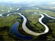 Kỳ thú khu tự nhiên hoang dã Pantanal - Brazil
