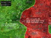 """""""Hổ Syria"""" xung trận, chiếm hầu hết các khu vực trọng yếu ở chảo lửa Aleppo"""