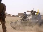 Người Kurd tiêu diệt 536 chiến binh IS, giải phóng hơn trăm làng mạc ở Syria