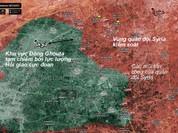 Quân đội Syria giải phóng hoàn toàn một thị trấn ở Đông Ghouta - VIDEO