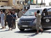 """300 thủ lĩnh IS trốn chạy khỏi """"thủ đô"""" Raqqa, Syria"""