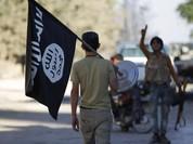 Quân đội Syria bất ngờ bị IS cắt đường tiếp vận đến Aleppo