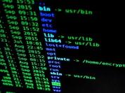Hàng trăm nghìn máy tính nhiễm mã độc của NSA