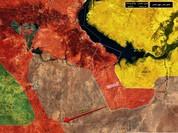 """""""Hổ Syria"""" đập tan IS, chiếm 12 địa bàn, 1.300 km2 tại tỉnh Raqqa (video)"""