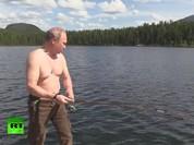 Tổng thống Putin săn cá trong rừng taiga (video)