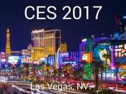 """Những sản phẩm đắt tới mức """"không tưởng"""" tại CES 2017"""