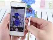 5 việc đơn giản người dùng iPhone nên làm