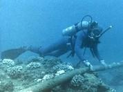 Viettel gửi SMS thông báo sự cố đứt cáp biển khiến kết nối Internet chập chờn