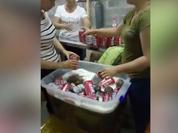 Trung Quốc: Bắt quả tang công nghệ chế biến bia Budweiser dởm