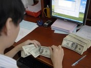 Phó Thống đốc: NHNN sẵn sàng bán ngoại tệ can thiệp thị trường