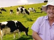 Hà Tĩnh: 3 sở, 6 huyện khảo sát tìm đất cho bầu Đức nuôi bò