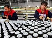 Trung Quốc lại cắt giảm cung cấp đất hiếm gây lo ngại cho Nhật Bản