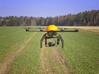 Công ty Anh nuôi tham vọng trồng 1 tỷ cây xanh nhờ drone