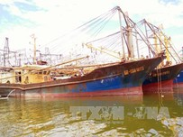 Nhiều câu hỏi lớn từ việc hàng loạt tàu cá vỏ thép ở Bình Định bị hư hỏng