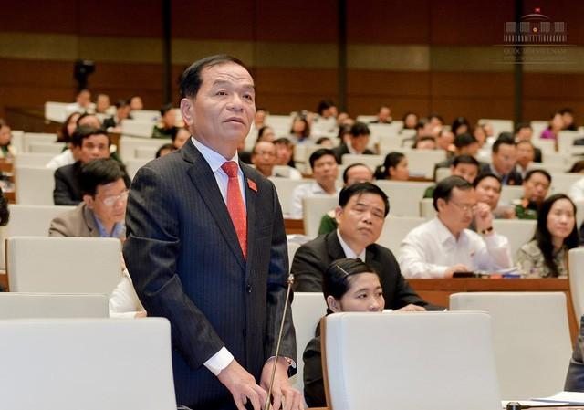 Đại biểu Quốc hội Lê Thanh Vân (Ảnh: Quochoi.vn)