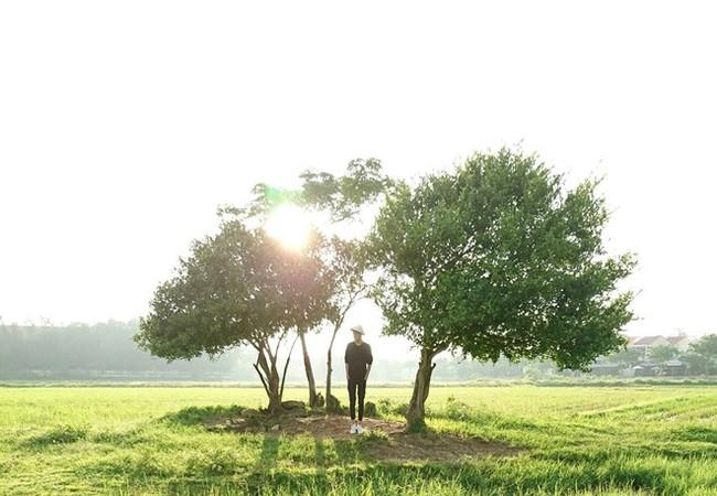 Bức ảnh chụp ngược sáng trên cánh đồng cỏ trải dài là tác phẩm được nhiều người yêu thích trong album chụp bằng Xperia XZ của Đinh Hằng.