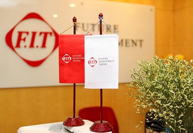 Dũng Tâm gom thêm 10 triệu cổ phiếu FIT, nâng tỷ lệ sở hữu lên 30,27%. (Ảnh minh họa: Internet)