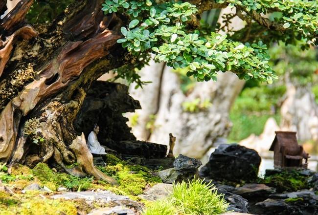 Video: Mách bạn cách tạo tiểu cảnh sân vườn chất lừ