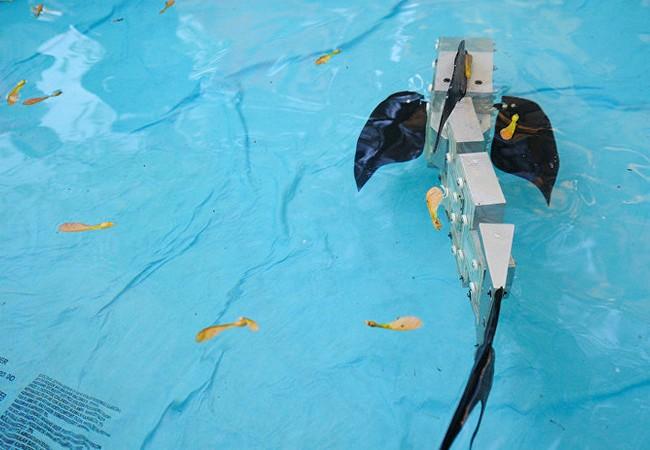 Video: Robot rắn nước xuất hiện tại Na Uy