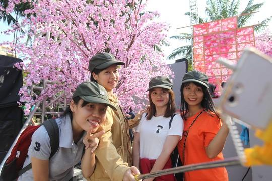 Người dân thưởng lãm hoa anh đào một lễ hội được tổ chức gần đây.