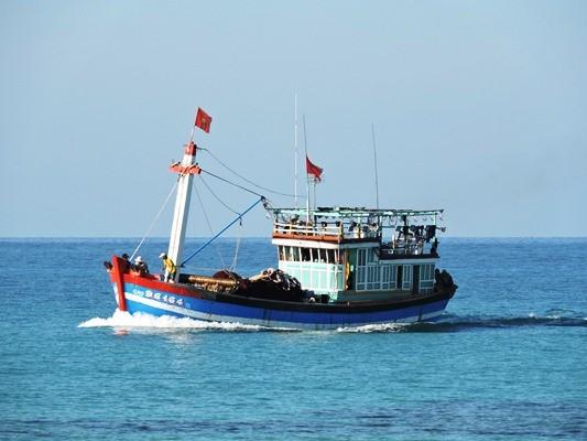 Video Hành trình đánh bắt cá tại ngư trường khơi xa