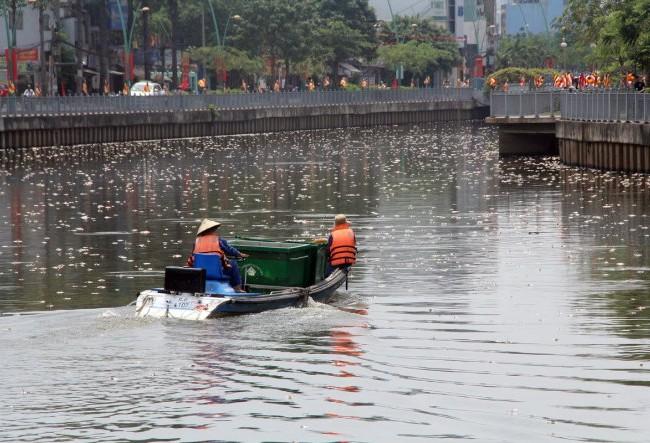 Xác cá nổi trắng mặt kênh Nhiêu Lộc - Thị Nghè đoạn gần cầu Trần Quang Diệu - Ảnh: Q.Khải